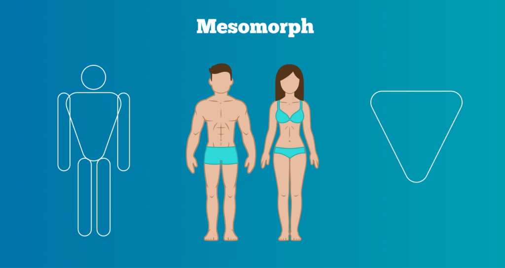 Mesomorph female