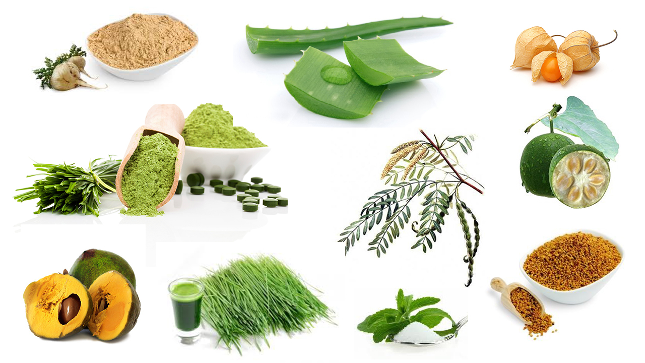 What is AIP diet